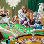 Dog's: Roleta