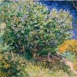 Arbusto Lilás
